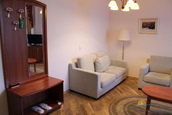 2-комнатный люкс. В гостиной. Корп.2.JPG
