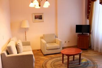 2-комнатный люкс. Гостиная. Корп.2.JPG