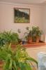 Место для отдыха в санатории Анджиевского