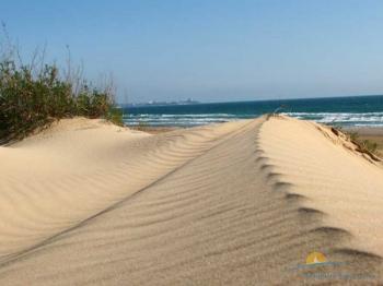 дюны на пляже.jpg