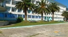 корпус и пальмы на территории