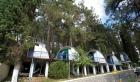 домики в сосновом лесу в 70 м от моря