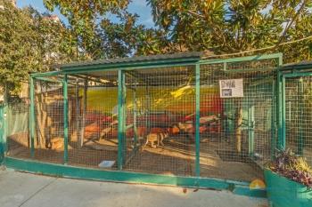 Зоопарк .jpg