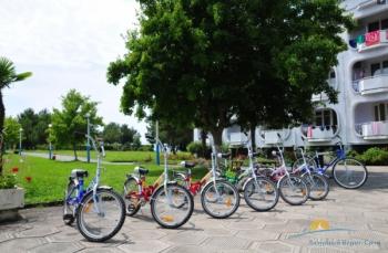 прокат велосипедов.jpg