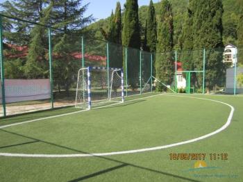 футбольное поле (2).JPG