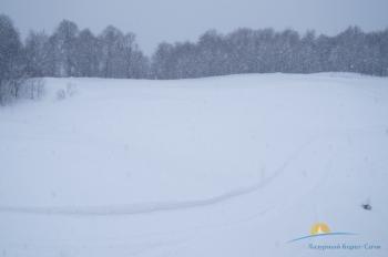 снежный покров зимой.JPG