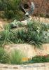 Террасный сад