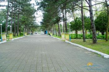 парковая территория.jpg