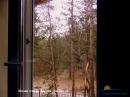 стандарт вид из окна