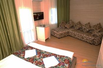 2-местный 1-комнатный Полулюкс - диван..jpg