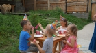 срубы отдых с детьми